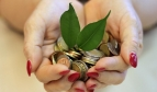 Hands holding coins and two leaves