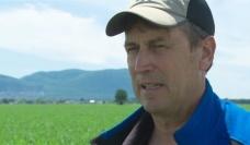 Louis Robert, lanceur d'alerte au Québec