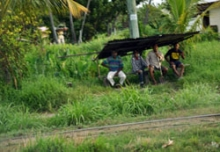 Fijian workers at bus stop