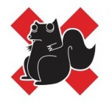 Third Choice campaign logo